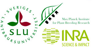 6<sup>th</sup> European Workshop on Plant Chromatin, 13-14 June 2019 at the MPIPZ, Cologne